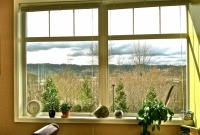 View of Snoqualmie River Valley from office 3