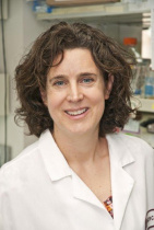 Catherine Anne Blish, MD, PHD