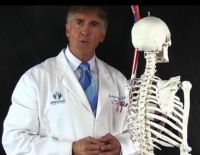 Dr. Conklin Spinal Anatomy Lecture